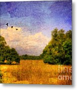 Summer Country Landscape Metal Print