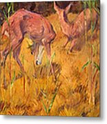 Summer Deer Metal Print