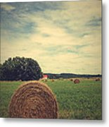 Summer Field Of Dreams Metal Print