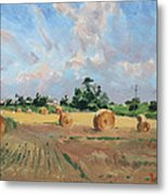 Summer Fields In Georgetown On Metal Print