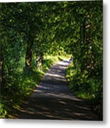 Summer Forest Road Metal Print