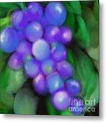 Summer Grape Metal Print