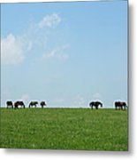 Summer Grazing Metal Print by Roger Potts