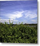Summer In Bridgehampton Metal Print