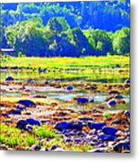 I Try To Keep The Summer Always In My Mind  Metal Print