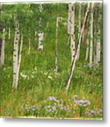 Summer In The Colorado Mountains Metal Print