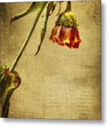 Summer Is Gone Metal Print