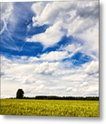 Summer Landscape With Cornfield Blue Sky And Clouds On A Warm Summer Day Metal Print