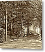 Summer Lane Sepia Metal Print