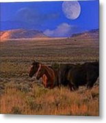 Summer Moon  Metal Print by Jeanne  Bencich-Nations