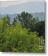 Summer Mountain Vista Metal Print