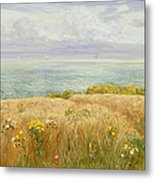 Summer On The Cliffs Metal Print