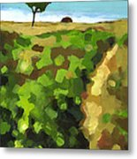 Summer Path Metal Print