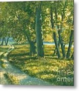 Summer Place Metal Print by Michael Swanson