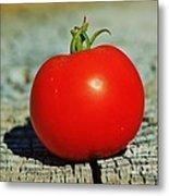Summer Red Tomato Metal Print