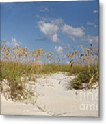 Summer Sea Oats Metal Print