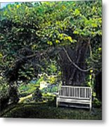 Summer Shade 4 Metal Print