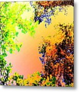 Looking Right Up Into The High Summer Sky Metal Print