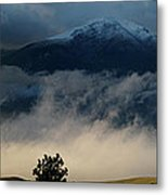Summer Snow Metal Print
