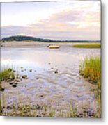 Summer Sunrise At Little Neck Metal Print