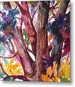 Summer Tree Metal Print by Paula Marsh