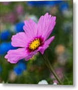 Summer Wild Blooms Metal Print