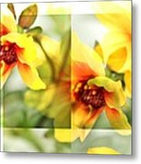 Summer Yellow Two Metal Print by Cathie Tyler