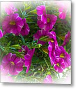 Summers Flowers Metal Print