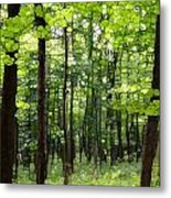 Summer's Green Forest Abstract Metal Print