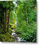 Summertime In The Cascades Metal Print