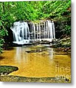 Summertime Refreshment Metal Print