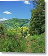 Summertime Trail At The Gap Metal Print