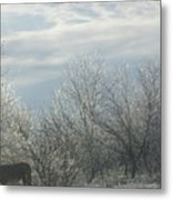 Sun Breaking Through Metal Print by Rosalie Klidies