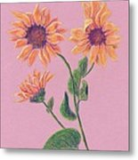 Sun Flowers Metal Print
