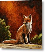 Sun Fox Metal Print by Crista Forest