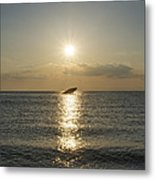 Sun Going Down In Cape May Metal Print