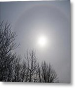 Sun Halo Through The Trees Metal Print