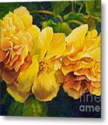 Sun Kissed Yellow Begonias Metal Print