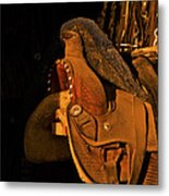 Sun On Leather Horse Saddle In Tack Room Equestrian Fine Art Photography Print Metal Print