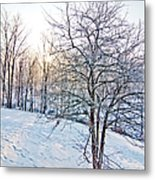 Sun Over A Snowy Day Metal Print