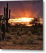 Sun Rays Over The Sonoran Desert  Metal Print