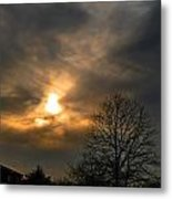 Sun Searcher Metal Print