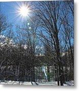 Sun Though The Trees  Metal Print