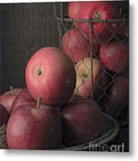 Sun Warmed Apples Still Life Standard Sizes Metal Print