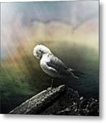 Sunbeam On Seagull Metal Print