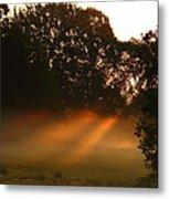 Sunbeams And Fog Metal Print