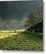 Sunbeams And Mist - Wolfscote Dale Metal Print
