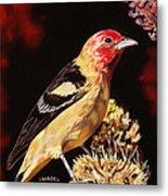 Sunbright Songbird Metal Print