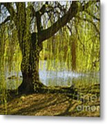 Sunday In The Park Metal Print