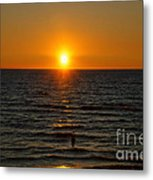 Sundown Admiration Metal Print